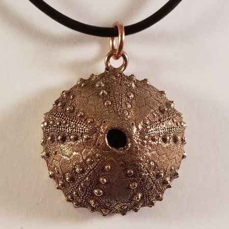 Bronze Sea Urchin