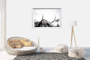 Coastal Collections Co Print Highland Cow Horns