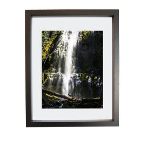 Coastal Collections Co Print Oregon Print