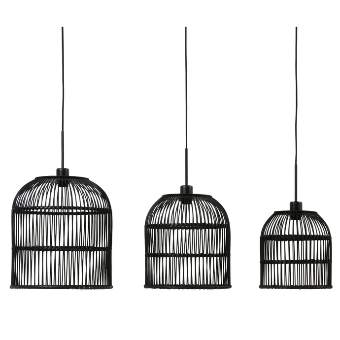 Suspension trio Molara