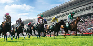 Top 5 Betting Tips For Shatin Races