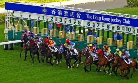 Enjoy the fast-paced action of horse racing at Happy Valley racecourse Hong Kong