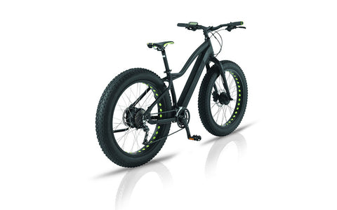 Easy Motion EVO BIG BUD AWD - Crazy Lenny's E-Bikes