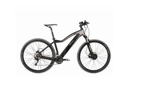 Easy Motion EVO SNOW 29 - Crazy Lenny's E-Bikes