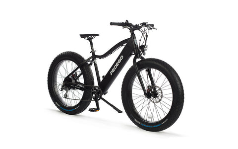 Pedego Trail Tracker Fat Tire Electric Bike - Crazy Lenny's E-Bikes