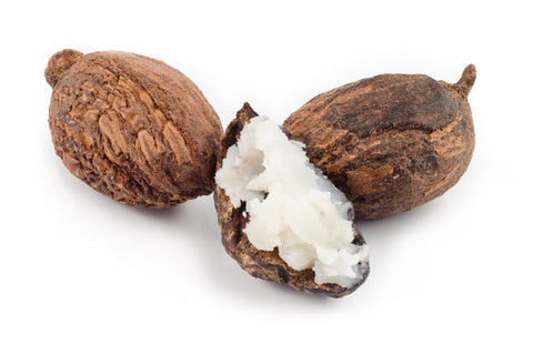 Shea butter nuts, open to reveal smooth shea butter, excellent skincare ingredient