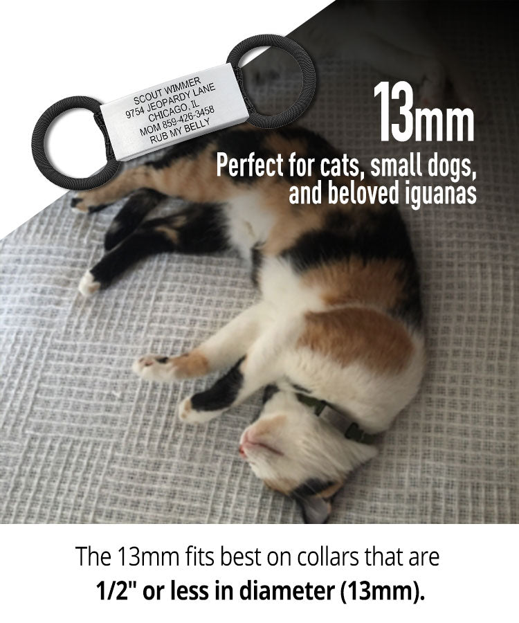 13 millimeter Pet ID