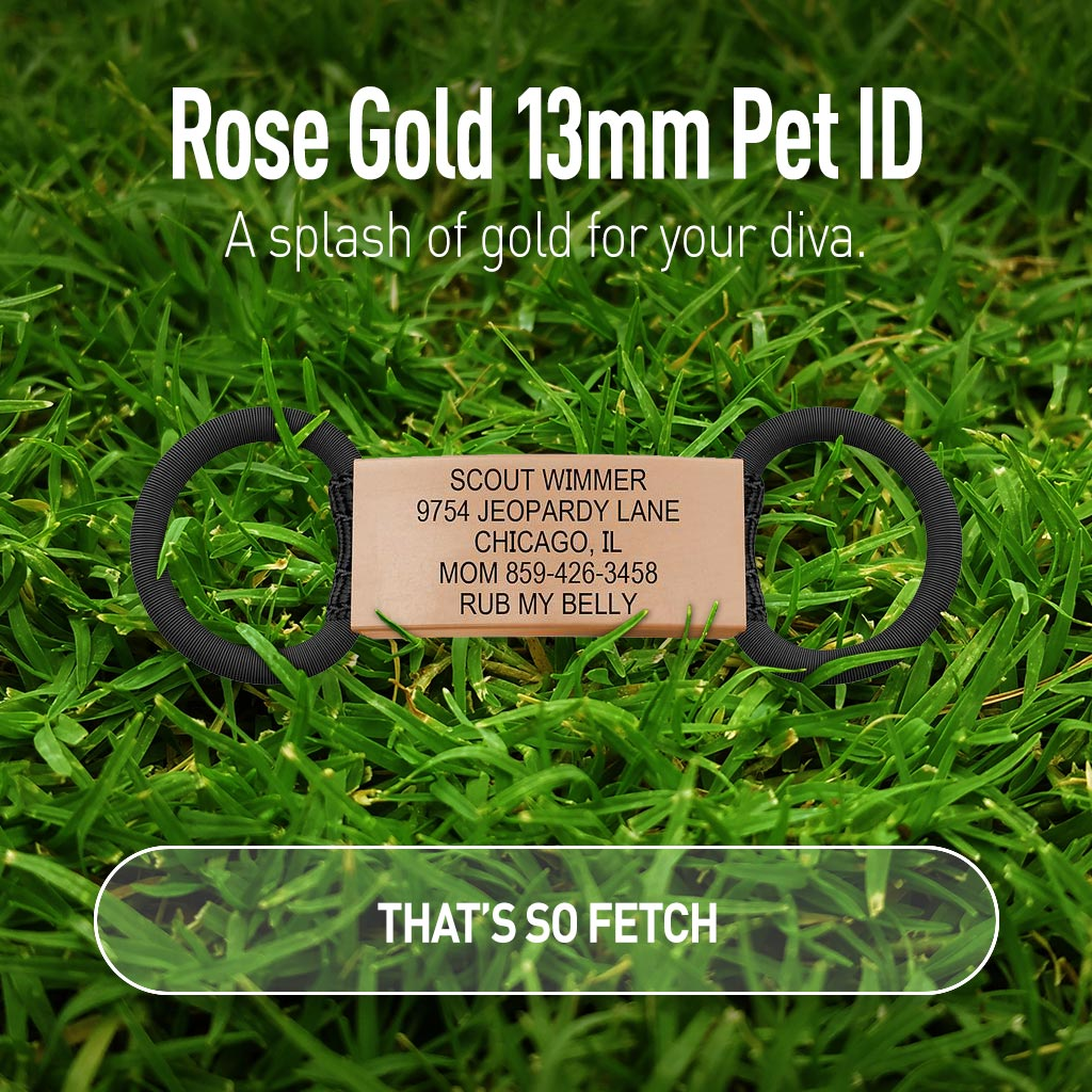 13mm Rose Gold Pet ID