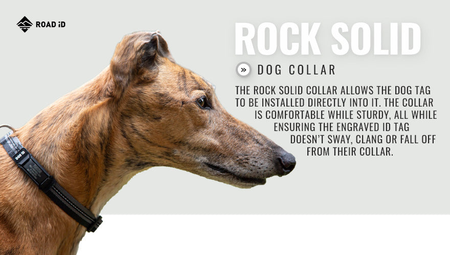 the rock solid collar id