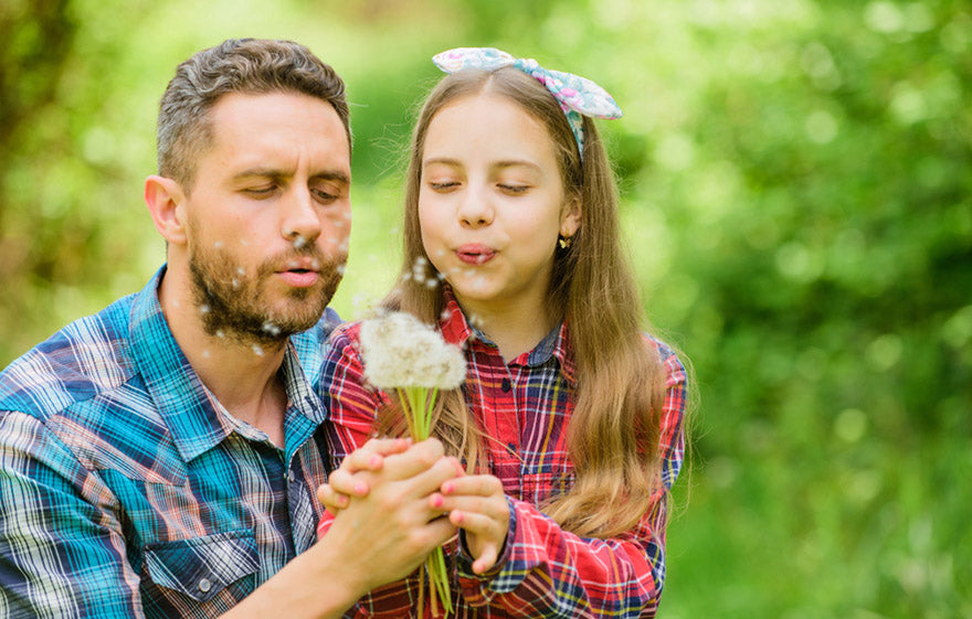 dad daughter collecting dandelion flowers