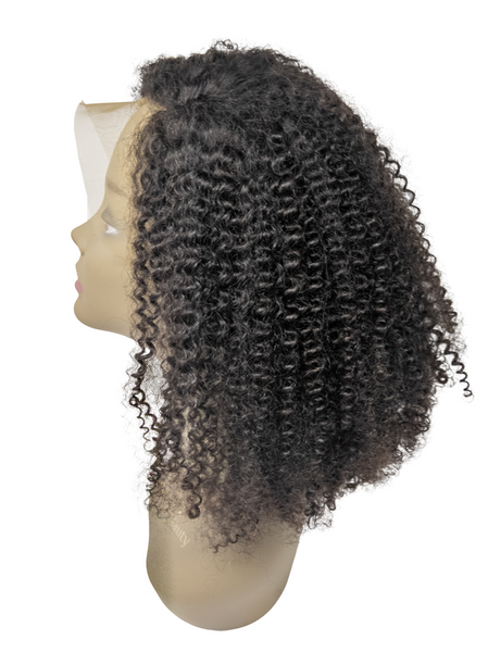 Kinky Curly Lace Front Wig | Hairgoals Club