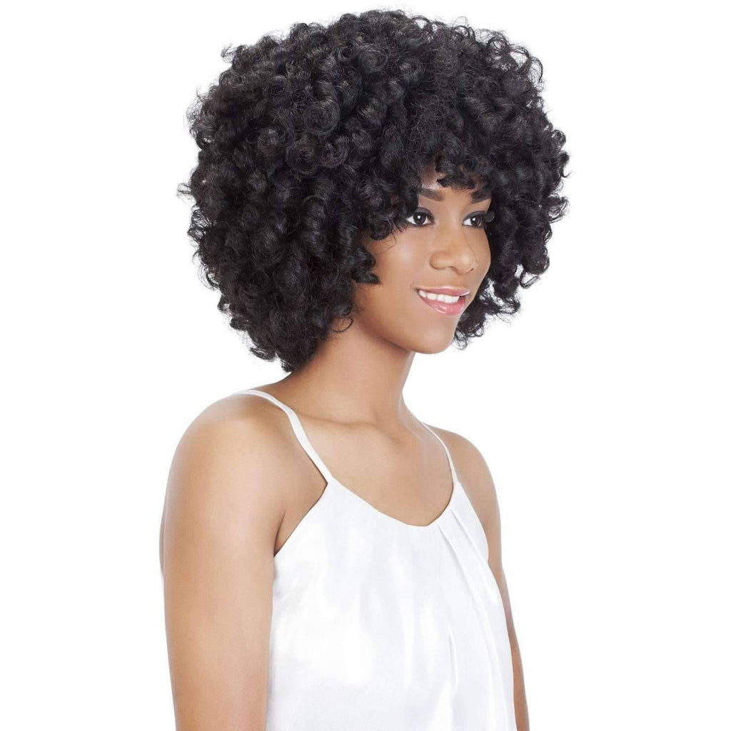 ROOTS | Synthetic Wig (Lace Front Traditional Cap) - African American Wigs