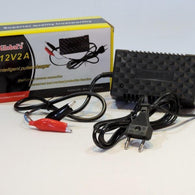 G - Amistar 12V Car Battery Intelligent Pulse Charger - Security and More