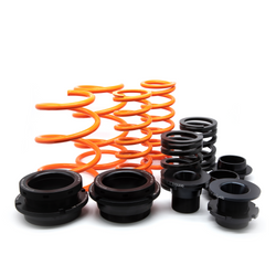 MSS Fully Adjustable Sport Springs MK6 GTI