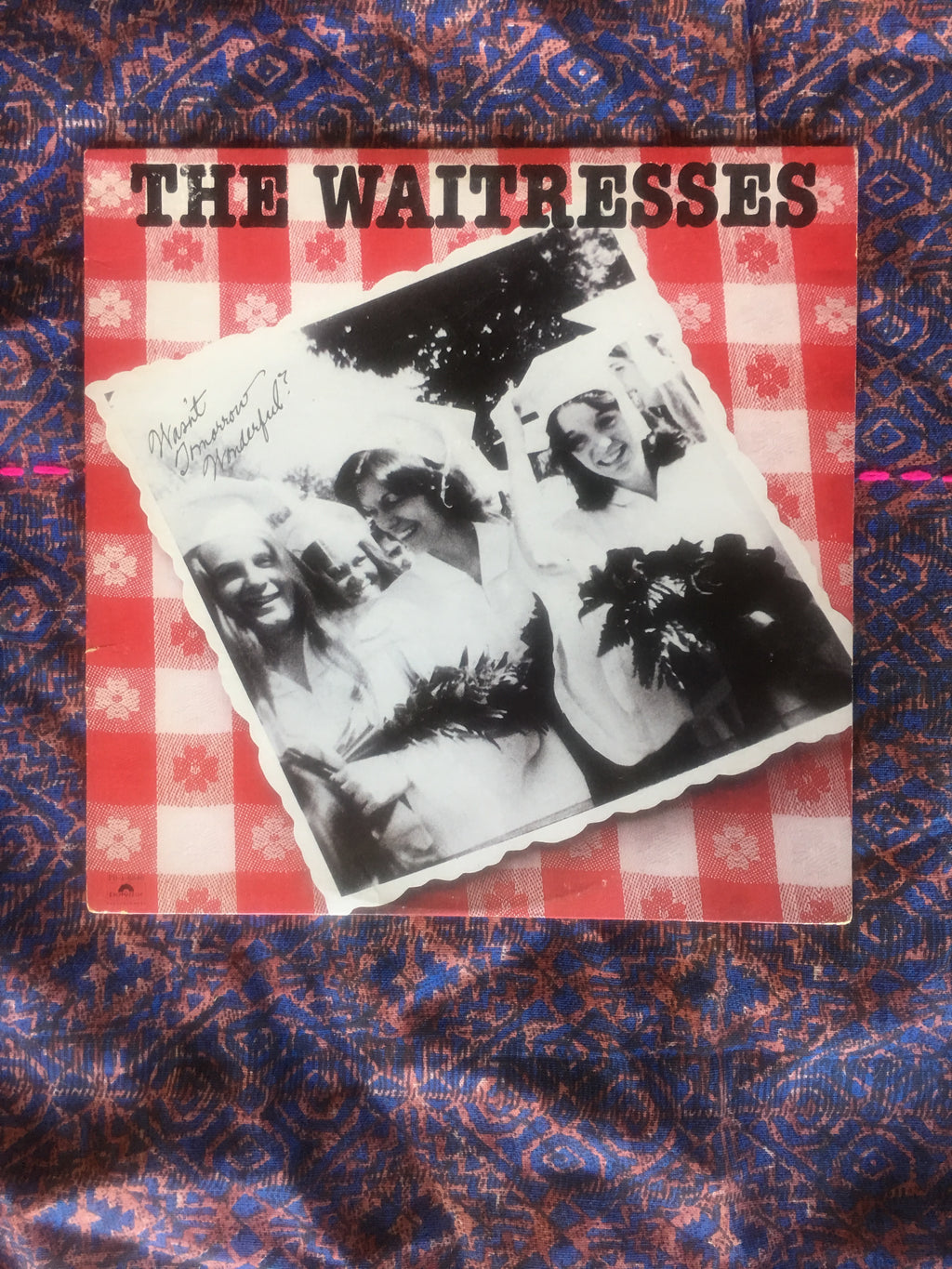 THE WAITRESSES VINYL