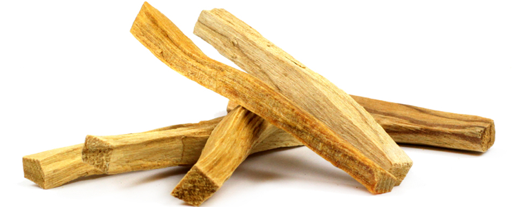 Palo Santo.... What Is It?
