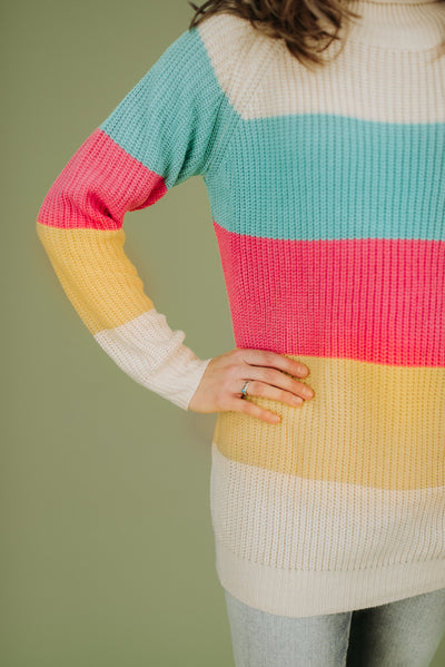 Blake Colorblock Turtleneck