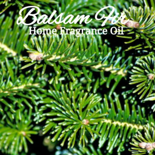 Balsam Fir Home Fragrance Diffuser Warmer Aromatherapy Burning Oil
