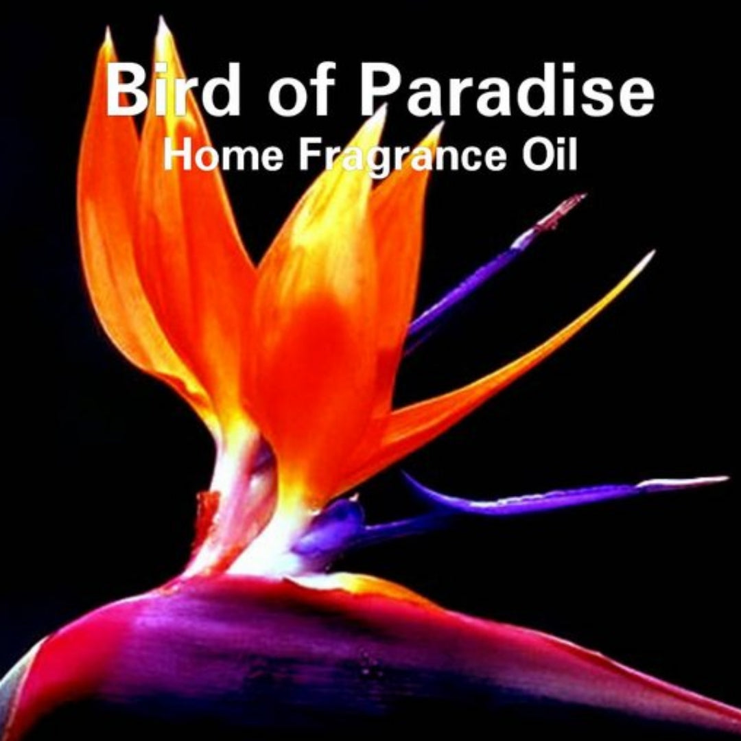 Bird of Paradise Home Fragrance Diffuser Warmer Aromatherapy Burning Oil