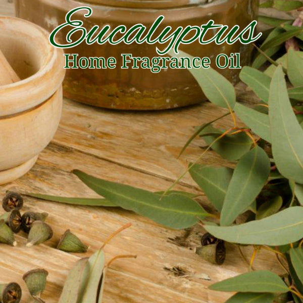 Eucalyptus Home Fragrance Diffuser Warmer Aromatherapy Burning Oil