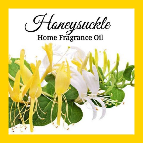 Honeysuckle Home Fragrance Diffuser Warmer Aromatherapy Burning Oil