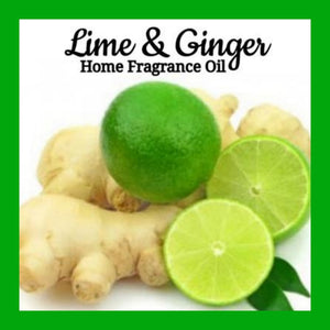 Lime Ginger Home Fragrance Diffuser Warmer Aromatherapy Burning Oil