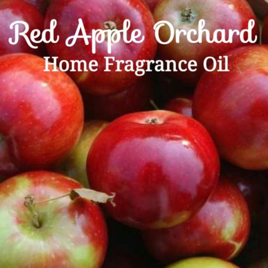Red Apple Orchard Home Fragrance Diffuser Warmer Aromatherapy Burning Oil