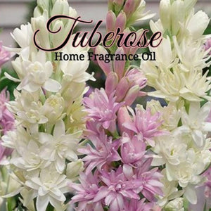 Tuberose Home Fragrance Diffuser Warmer Aromatherapy Burning Oil
