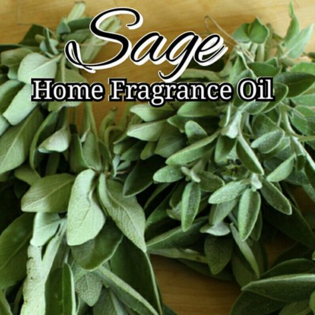 Sage Home Fragrance Diffuser Warmer Aromatherapy Burning Oil