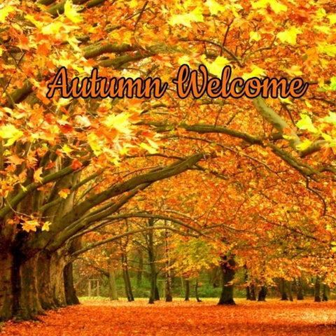 Autumn Welcome Candle/Bath/Body Fragrance Oil