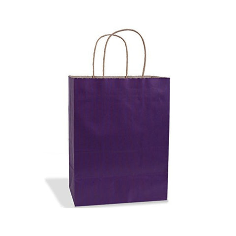 Plum Purple Kraft Handle Paper Party Favor Wedding Gift Bags - Set of 18
