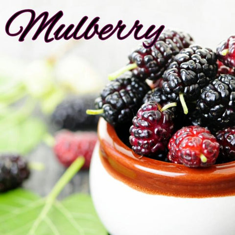 Mulberry Candle/Bath/Body Fragrance Oil