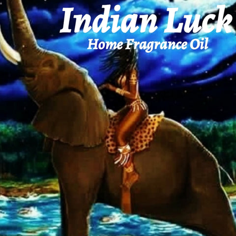 Indian Luck Home Fragrance Diffuser Warmer Aromatherapy Burning Oil