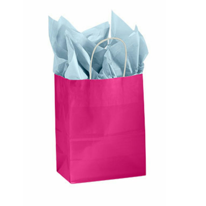 Fuchsia Gloss Paper Kraft Handle Party Favor Wedding Gift Bags - Set of 25