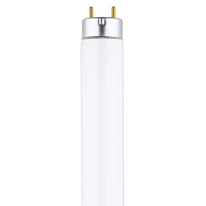 17 Watt T8 Linear Fluorescent Light Bulb