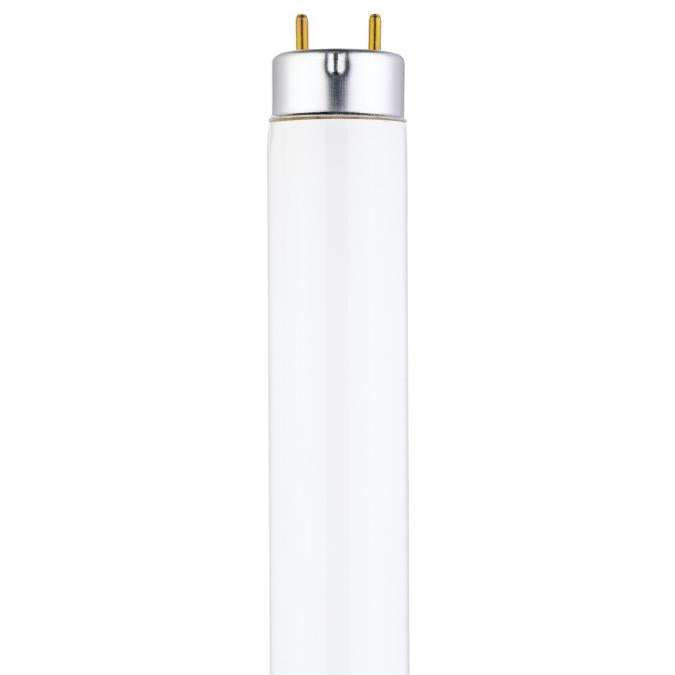 15 Watt T8 Linear Fluorescent Light Bulb