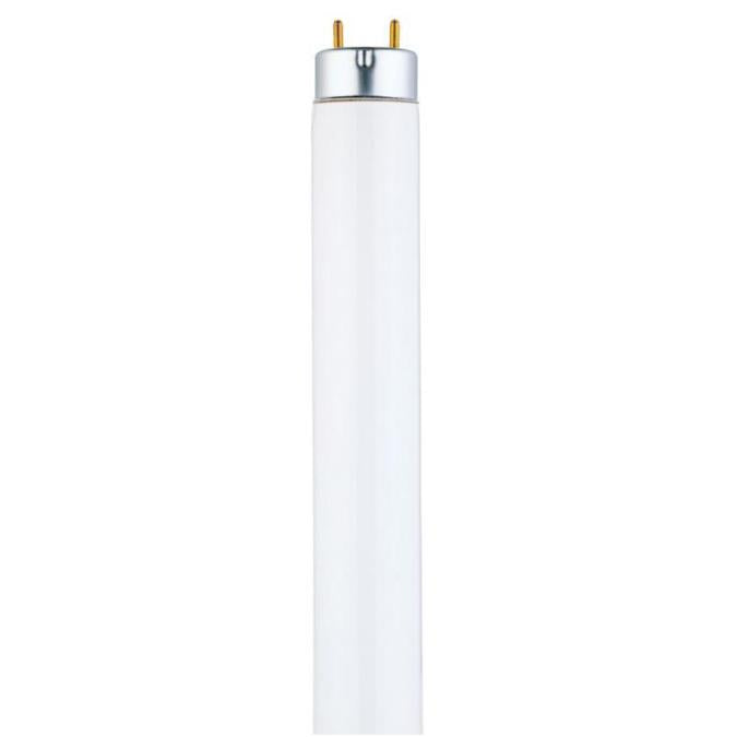 32 Watt T8 Linear Fluorescent Light Bulb