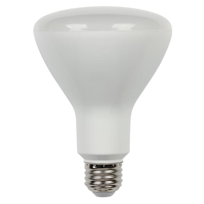 8 Watt (65 Watt Equivalent) R30 Flood Dimmable LED Light Bulb ENERGY STAR