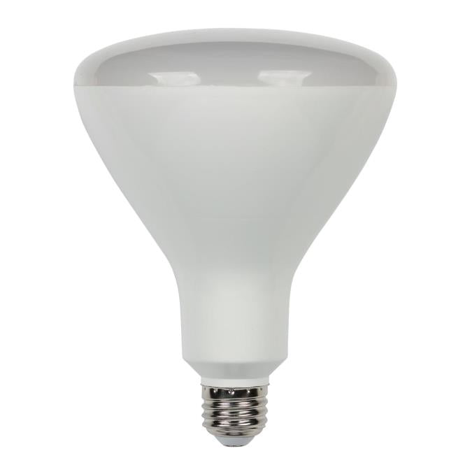 16-1/2 Watt (85 Watt Equivalent) R40 Flood Dimmable LED Light Bulb ENERGY STAR