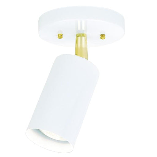 One-Light Indoor Multi-Directional Flush-Mount Ceiling Fixture