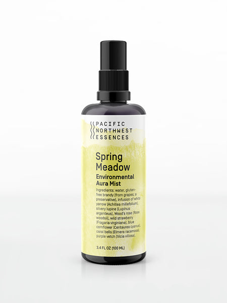 Spring Meadow Environmental Aura Mist