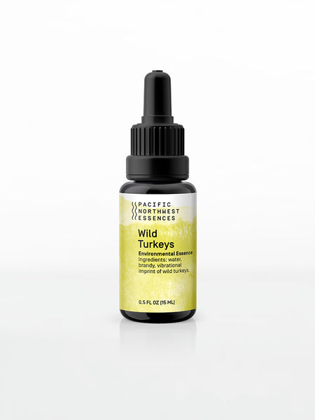 Wild Turkeys Environmental Essence