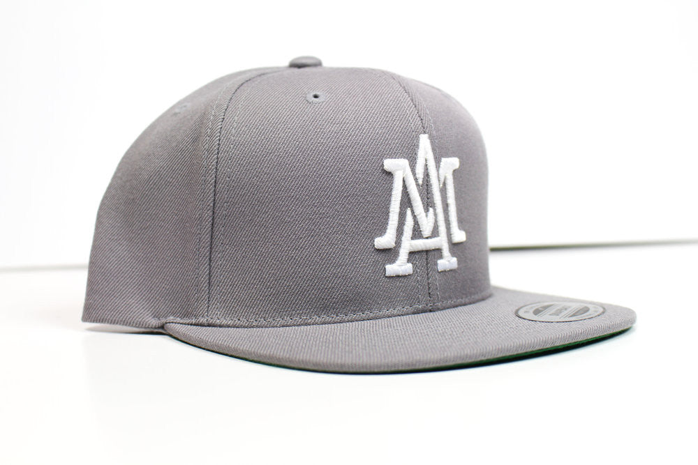 The Merciless Athletics Lifestyle Logo Snapback in Silver