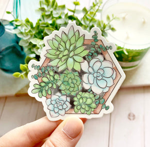 Watercolor Succulent Planter Sticker