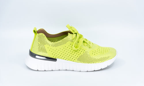 Tulip 4075 in Lime Green