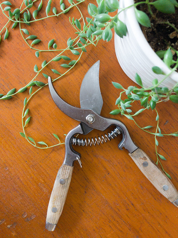 Heaven In Earth Pruning Shears