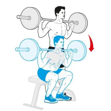 Inspire Athletic Squat