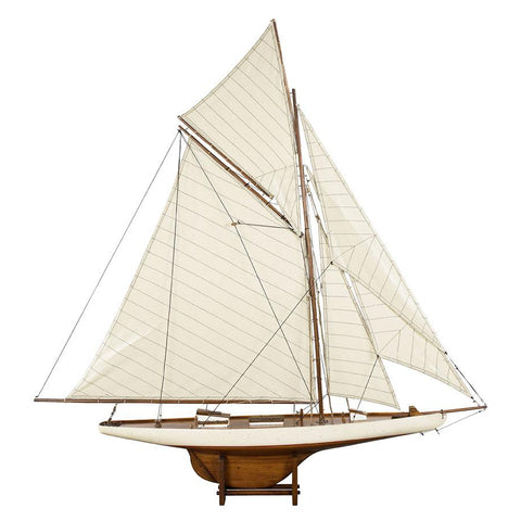 AM America's Cup Columbia 1901 Model Medium AS076F