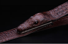 Belt Alligator Serious