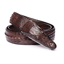 Belt Alligator